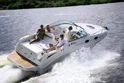 Продам круизный катер Sea Ray 255 Sundancer